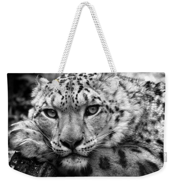 Snow Leopard In Black And White Weekender Tote Bag