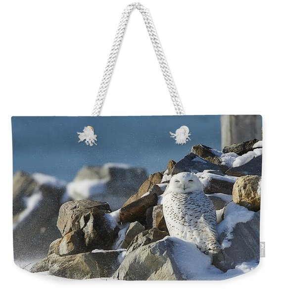 Snowy Owl On A Rock Pile Weekender Tote Bag