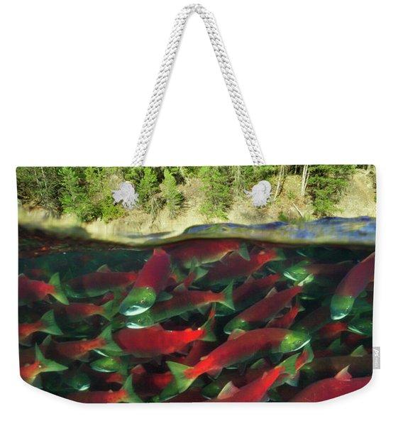 Sockeye Salmon Run Weekender Tote Bag