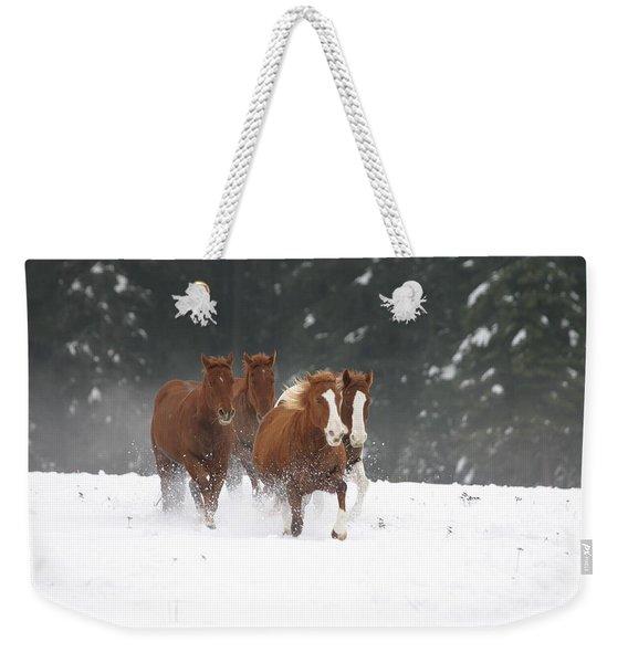 Sorel's N Snow Weekender Tote Bag