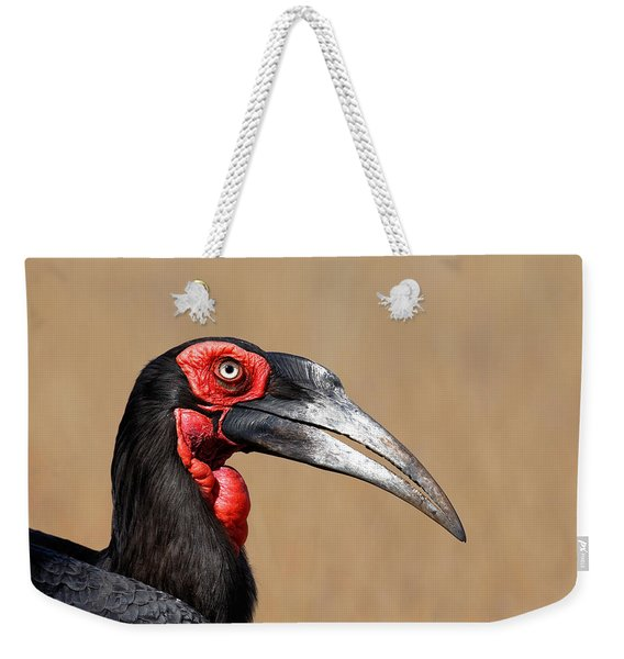 Southern Ground Hornbill Portrait Side View Weekender Tote Bag