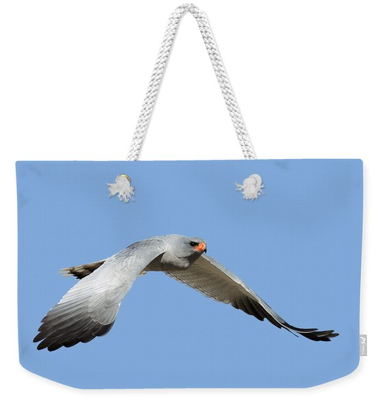 Southern Pale Chanting Goshawk In Flight Weekender Tote Bag