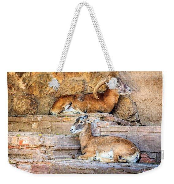 Spanish Ibex Weekender Tote Bag