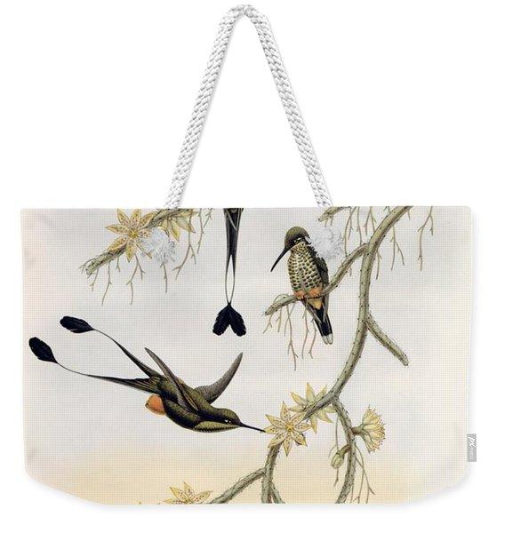 Spathura Solstitialis Weekender Tote Bag