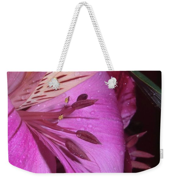Splendid Beauty Weekender Tote Bag