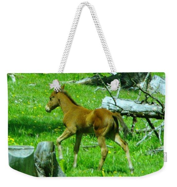 Spring Colt  Weekender Tote Bag