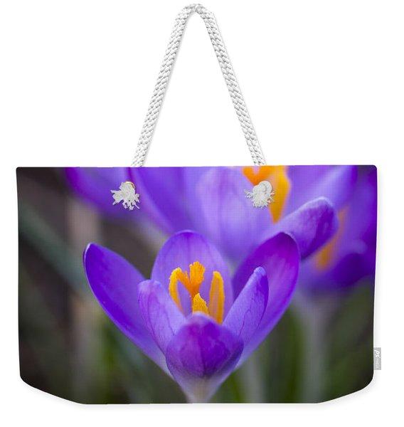 Spring Has Sprung Weekender Tote Bag