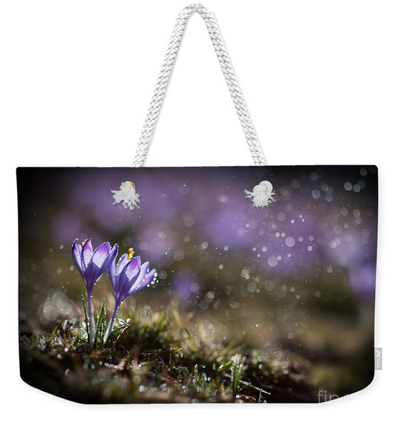 Weekender Tote Bag featuring the photograph Spring Impression I by Jaroslaw Blaminsky