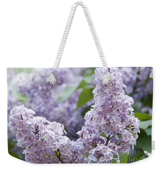 Spring Lilacs In Bloom Weekender Tote Bag