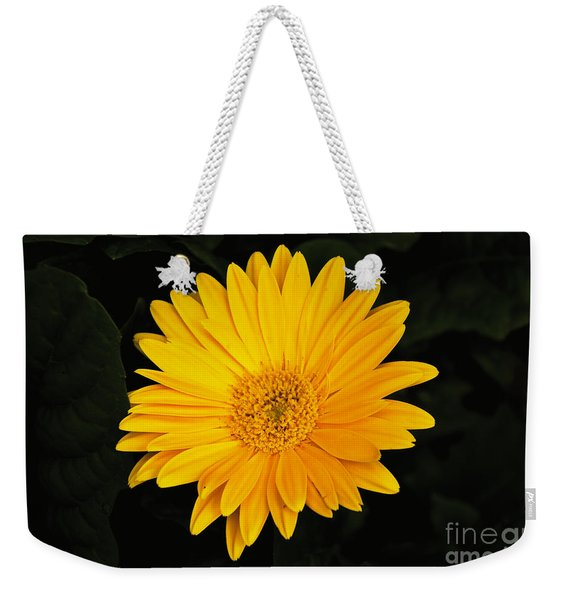 Weekender Tote Bag featuring the photograph Spring by William Norton