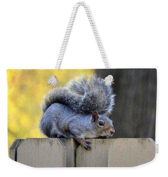 Squirrel About To Jump Weekender Tote Bag