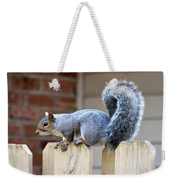 Squirrel Across The Fence Weekender Tote Bag