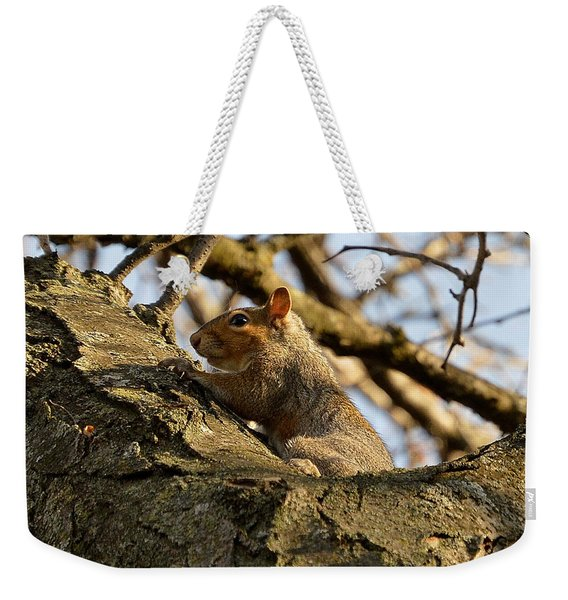 Squirrel Explorer Weekender Tote Bag
