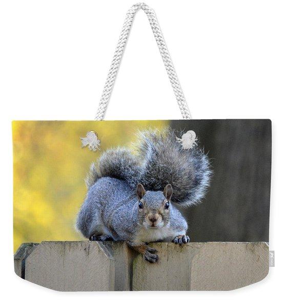 Squirrel Interrupted Weekender Tote Bag