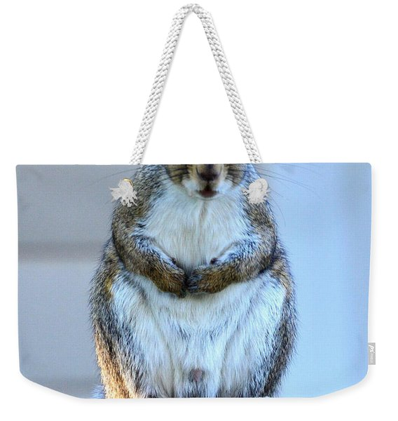 Squirrel Master Of The Fence Weekender Tote Bag