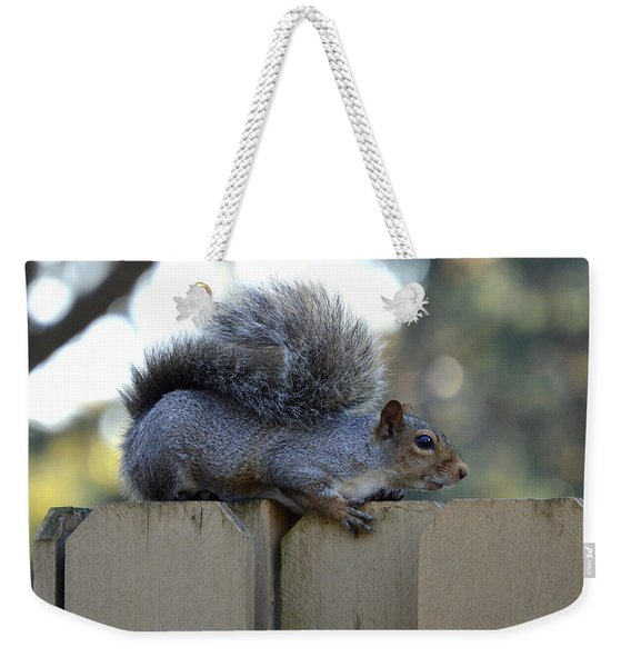 Squirrel On The Watch Weekender Tote Bag