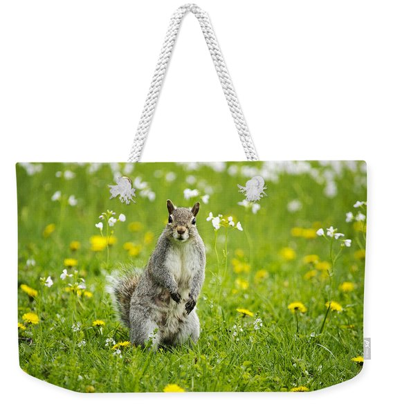 Squirrel Patrol Weekender Tote Bag