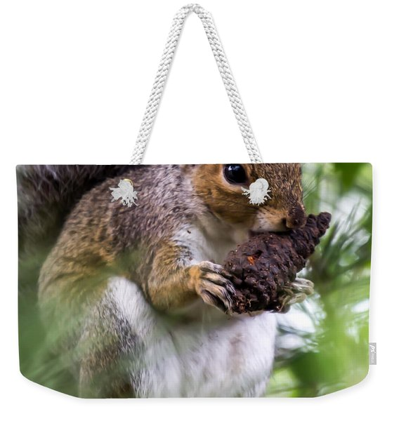 Weekender Tote Bag featuring the photograph Squirrel With Pine Cone by Scott Lyons