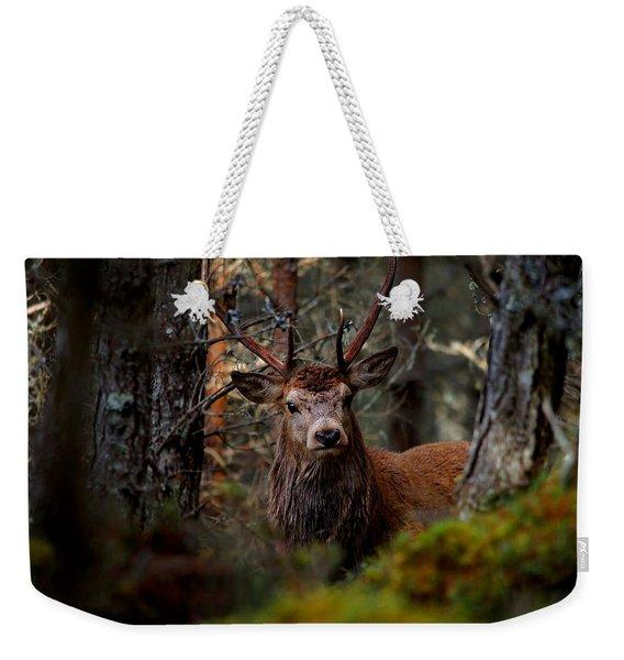 Stag In The Woods Weekender Tote Bag