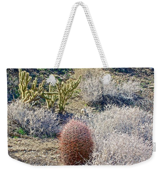 Staghorn And Barrel Cacti Along Fern Trail In Indian Canyons Near Palm Springs-california  Weekender Tote Bag