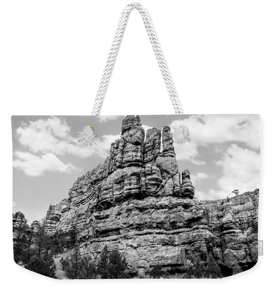 Standing Tall In Black And White Weekender Tote Bag
