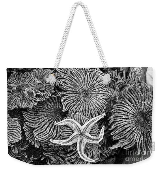 Starfish 3 Weekender Tote Bag