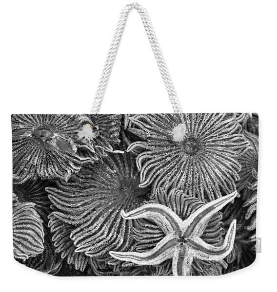 Starfish 4 Weekender Tote Bag