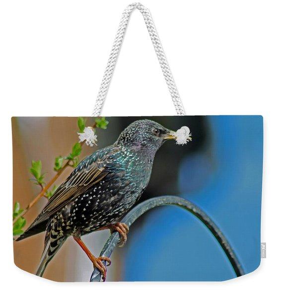 Starling Perched In Garden Weekender Tote Bag
