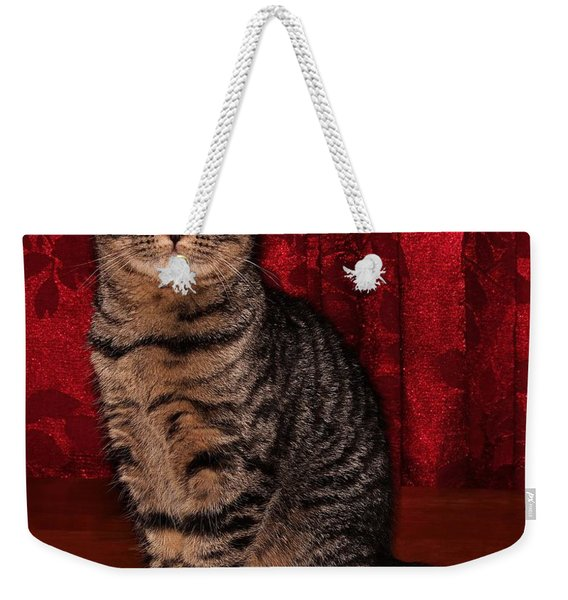 Statuesque Fold 3b Weekender Tote Bag