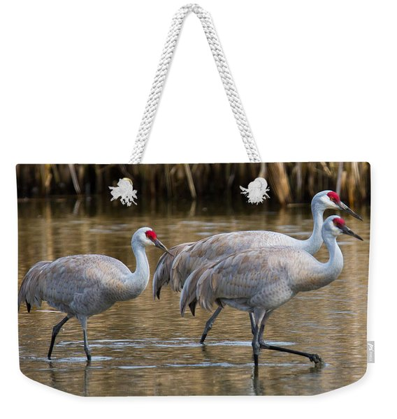 Steppin Out Weekender Tote Bag
