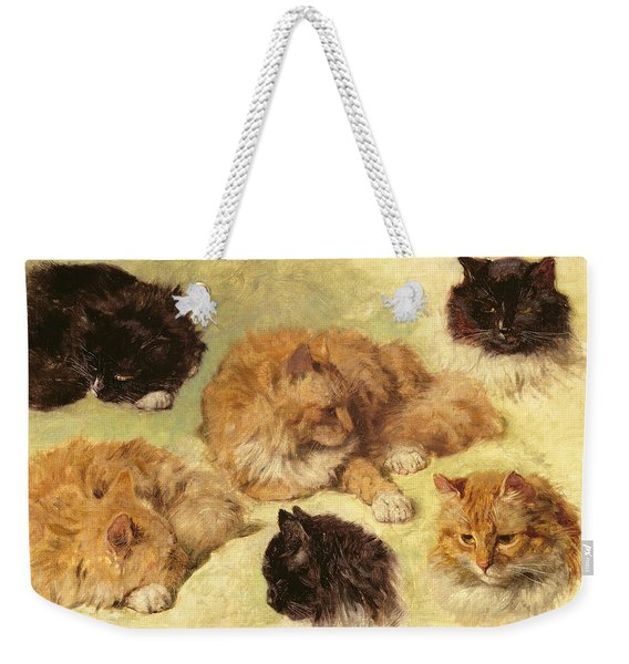 Studies Of Cats, 1895 Weekender Tote Bag