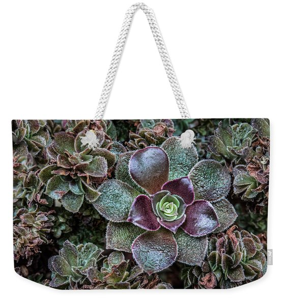 Succulent Art Weekender Tote Bag