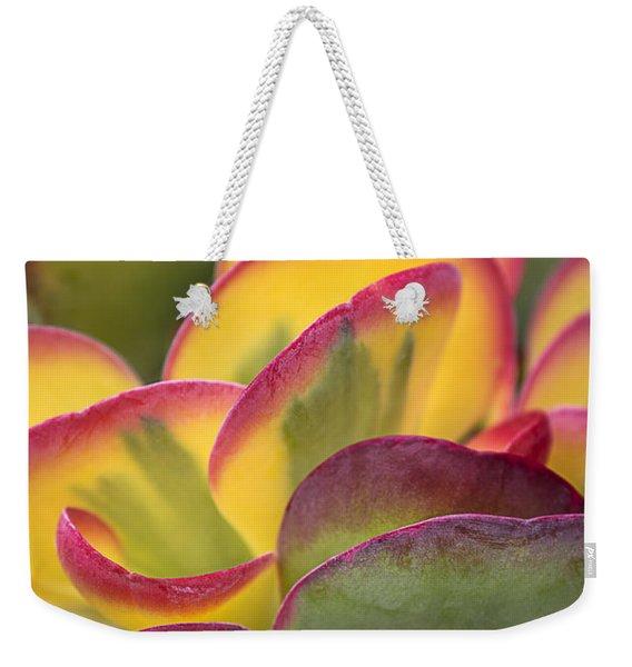 Succulent Light Weekender Tote Bag