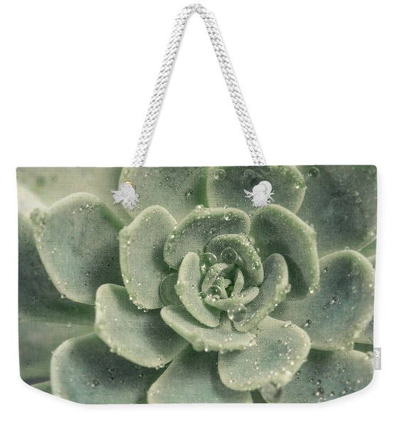 Succulent Weekender Tote Bag