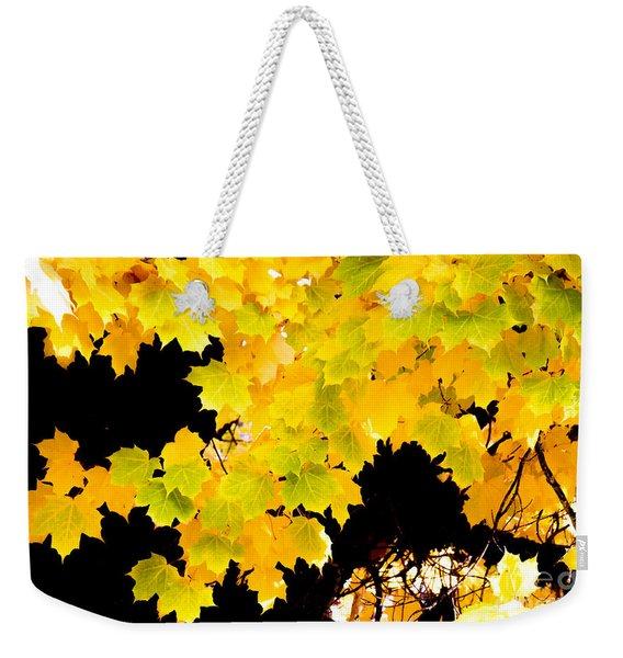 Sugar Maple Autumn Foliage, Quincy California Weekender Tote Bag