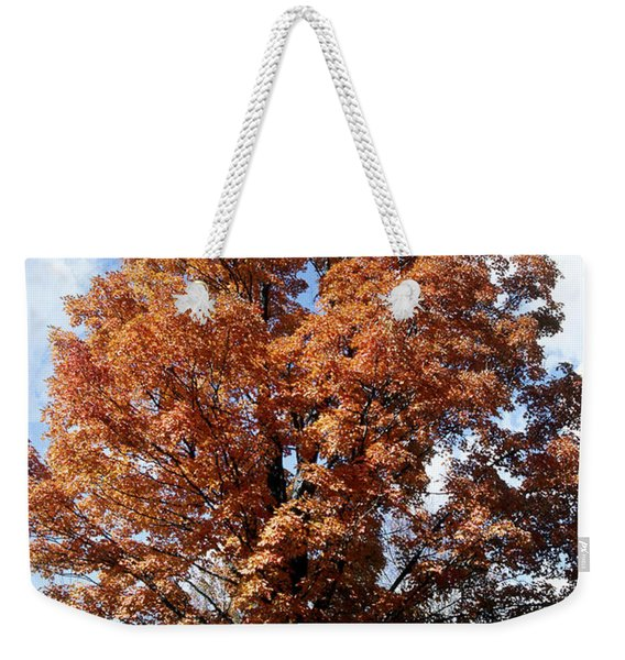 Sugar Maple In Autumn Weekender Tote Bag
