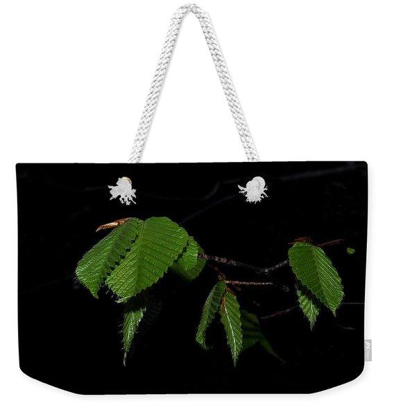 Summer Leaves On Black Weekender Tote Bag