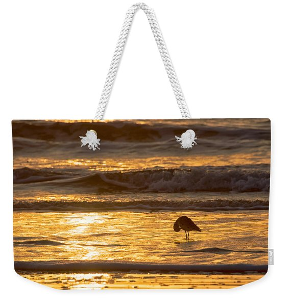 Weekender Tote Bag featuring the photograph Sun Salutation by Mary Lee Dereske