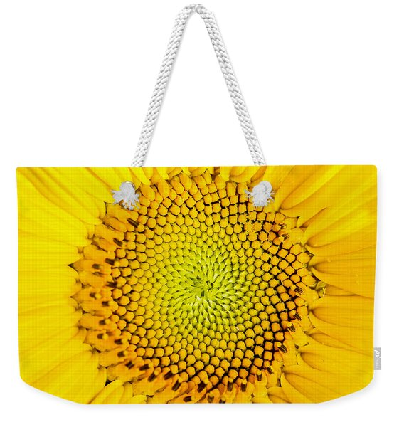 Weekender Tote Bag featuring the photograph Sunflower  by Edward Fielding