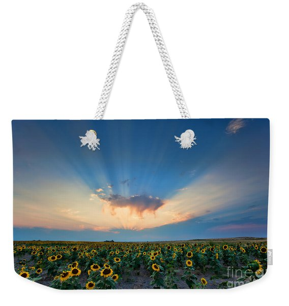 Sunflower Field At Sunset Weekender Tote Bag