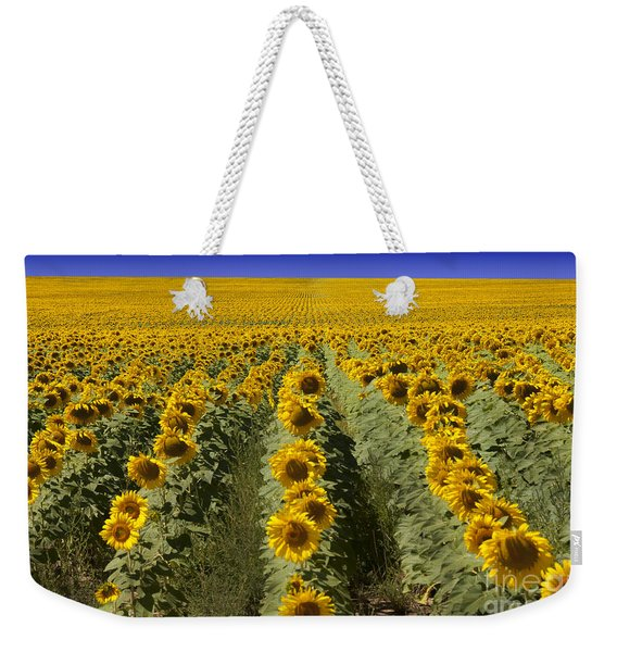 Sunflower Field Weekender Tote Bag