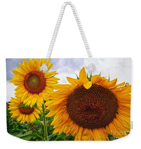 Sunflower Mama And Her Daughters  Weekender Tote Bag