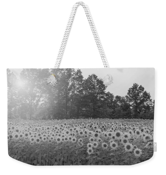 Sunflower Sunset Bw Weekender Tote Bag