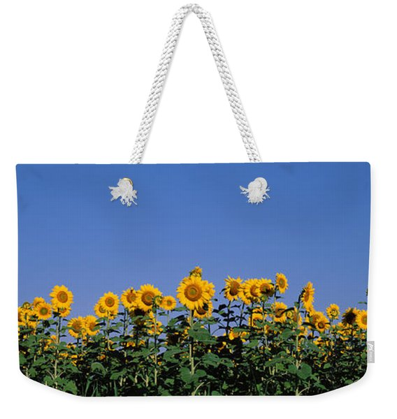 Sunflowers In A Field, Marion County Weekender Tote Bag