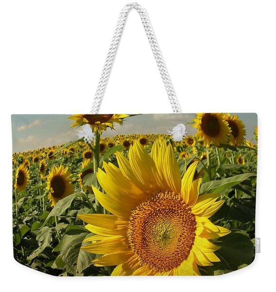 Kansas Sunflowers Weekender Tote Bag