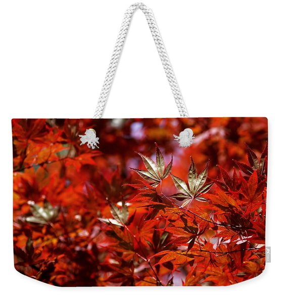 Sunlit Japanese Maple Weekender Tote Bag