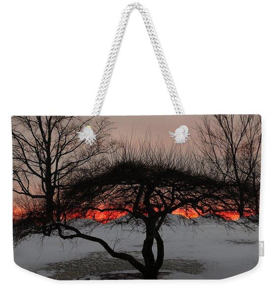 Sunroof Weekender Tote Bag