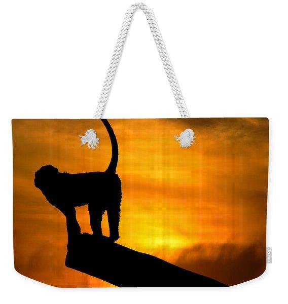 Monkey / Sunset Weekender Tote Bag