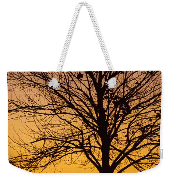 Sunset Tree Weekender Tote Bag
