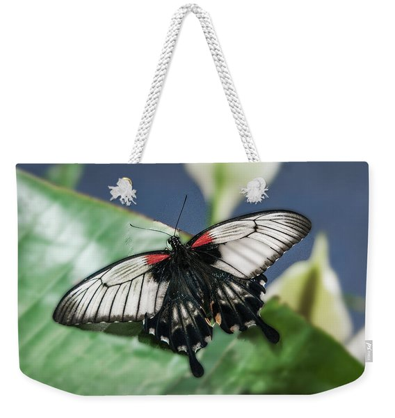 Weekender Tote Bag featuring the digital art Swallowtail Butterfly by Mae Wertz